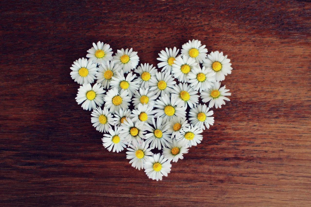 Frases de amor para namorada curtas