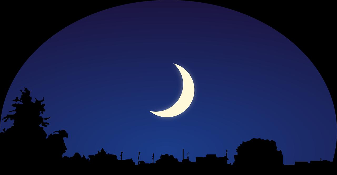 Mensagem de Boa Noite Amor