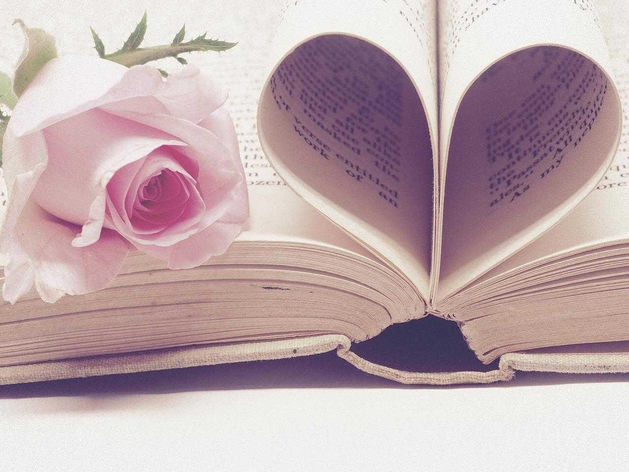 Frases de Amor e Saudade